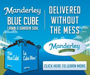 Manderley ad 300 x 2550